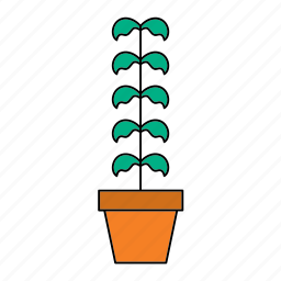decoration, flora, home, houseplant, nature, plant, pot icon
