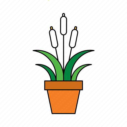flora, houseplant, lake, nature, peace lily, plant icon
