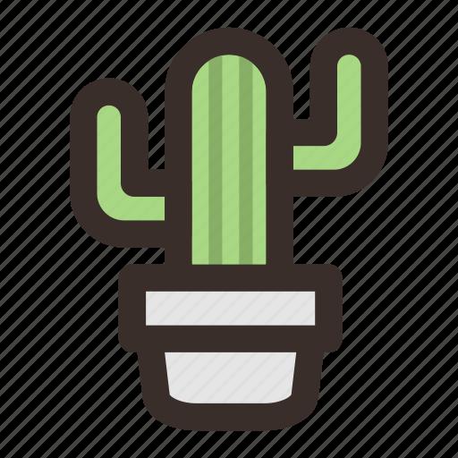 cactus, decorative, flora, plant, thorns icon
