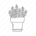 flower, leaf, nature, plant, pot icon