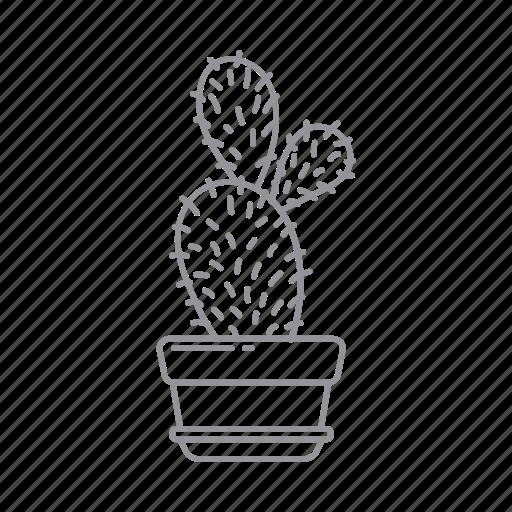 Flower, leaf, nature, plant, pot icon - Download on Iconfinder