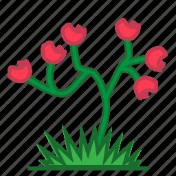 flower, plants, succulent, trees icon