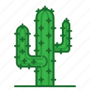 cacti, cactus, plants, succulent, trees icon