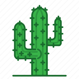 cacti, cactus, plants, succulent, trees icon