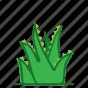 aloe, aloe vera, plants, succulent, trees icon