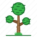 plants, round, succulent, trees icon