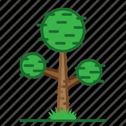 plants, round, succulent, trees icon