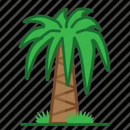 palm, plants, succulent, trees icon