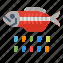 eco, fish, plastic, pollution
