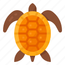 marine, ocean, sea, turtle