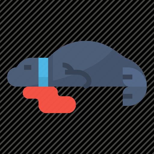 animal, ocean, plastic, seal icon