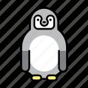 bird, nature, penguin, polar, polar life, south pole icon