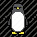 animal, bird, penguin, polar, polar life, south pole, wild