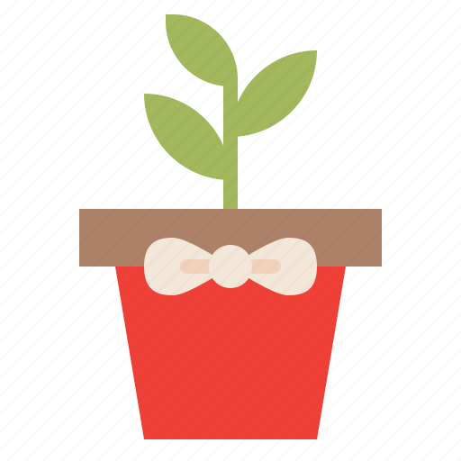 gift, plant, present, surprise icon