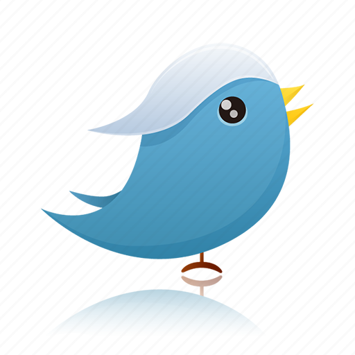bird, communication, social media, twitter icon