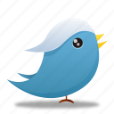 bird, social media, twitter icon
