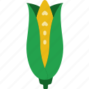 corn, eat, food, fruit, kitchen, vegetable icon