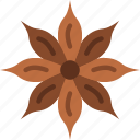 anise, eat, food, fruit, kitchen, star, vegetable icon