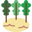 cellery, eat, food, fruit, kitchen, vegetable icon