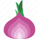 eat, food, fruit, kitchen, shallot, vegetable icon