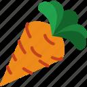carrot, eat, food, fruit, kitchen, vegetable icon