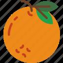 eat, food, fruit, kitchen, orange, vegetable icon