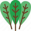 eat, food, fruit, kitchen, spinach, vegetable icon