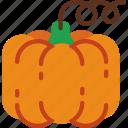 eat, food, fruit, kitchen, pumpkin, vegetable icon