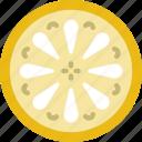 drink, eat, food, lemon, pizza icon