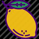 eat, food, fruit, kitchen, lemon, vegetable icon