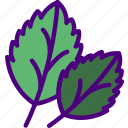 basil, eat, food, fruit, kitchen, vegetable icon
