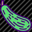 eat, food, fruit, kitchen, squash, vegetable icon