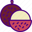 eat, food, fruit, kitchen, lychee, vegetable icon
