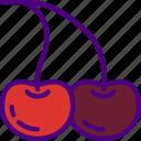 cherries, eat, food, fruit, kitchen, vegetable icon
