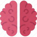 anatomy, brain, doctor, hospital, medical icon