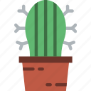 cactus, corporate, job, office, work icon