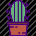 cactus, corporate, job, office, work