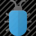 bug, code, problem