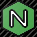 nginx, programing