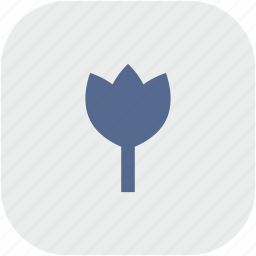 app, bud, flower, gray, plant icon