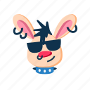animal, cool, glasses, grin, punk, rabbit, smile icon