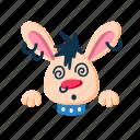 characer, face, hypno, hypnotized, pet, punk, rabbit icon