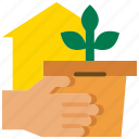 garden, growth, plant, planting, quarantine, stay at home, stay home icon