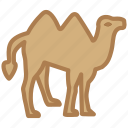 animal, camel, desert, ramadan, transport, travel icon