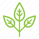 bio, eco, ecological, ecology, organic, plant, tree icon