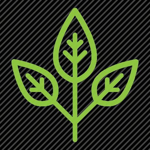 bio, eco, ecological, ecology, organic, plant, tree icon