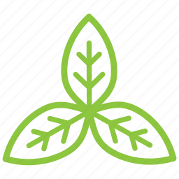 eco, ecology, leaf, organic, recycle icon