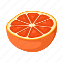 food, fresh, fruit, orange, red, tropical, vegetable