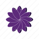 bloom, flower, herb, religious icon