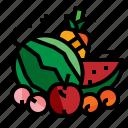 fruit, apple, melon, pineapple